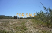 7016 , Amazing acre of land at Pyrgaki...walking distance to beach!