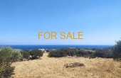 9022, 4.7 acres in Aspro Chorio.  Close to the beach, and the town