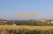 5025, 2 Bedroom / 1 Bathroom house in Kamares for rent