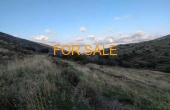 12010, 4,000 square meter of mountainside land in Lefkes - Vrissi