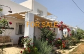 1602, Own 3 houses only steps from Ambelas beach!  Unimaginable opportunity!