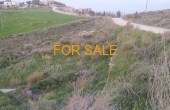 14005, 8,000 square meters on land in Lefkes