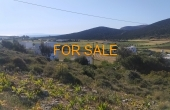 14008, 1,000 square meters of land, with views at Marathi