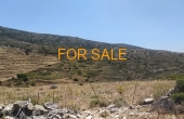 13010, Mountain for sale in Aneratza