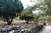 1808, Land opportunity in the heart of Lefkes!  A rare find
