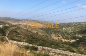 2011, 11 acres nestled in the mountain hills of Lefkes.