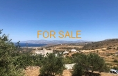 1207, Great deal in Lefkes!  Low price!